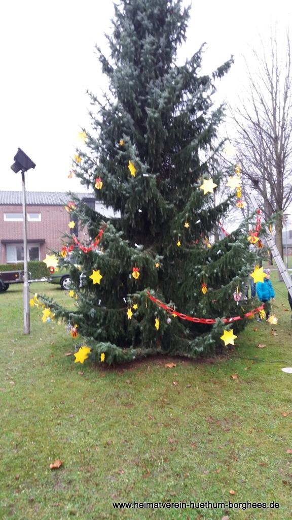 24 schmБcken Weihnachtsbaum (10)
